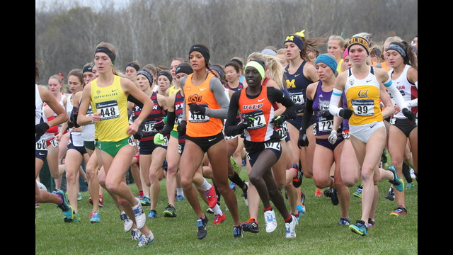 Lobos compete in NCAA cross country championships