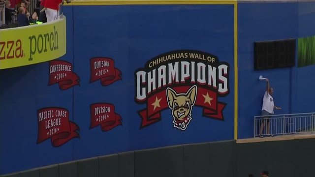 Minor League Baseball Raises $300,000 for Disaster Relief