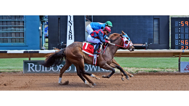 Fincher-Trained Trio Lead Saturday's  Mountain Top Thoroughbred Futurity