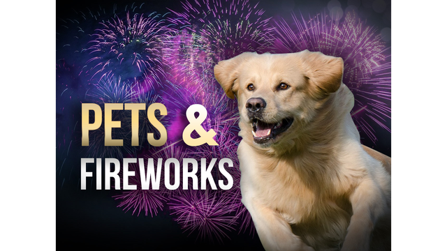 Fireworks cause thousands of injuries each year
