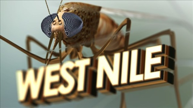Mosquito spraying planned in Dublin after positive West Nile Virus test