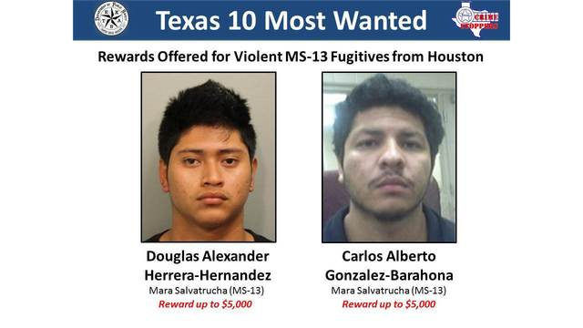 Two El Salvadorian MS-13 gang members added to Texas' Most Wanted List