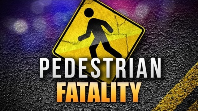 Pedestrian struck, killed in late-night crash