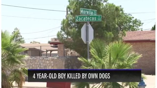 Dogs involved in deadly attack euthanized by Animal Services