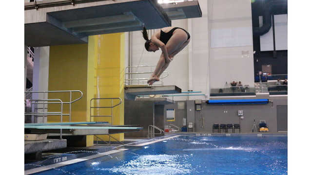 Nmsu Diving Finishes 4th At Nau